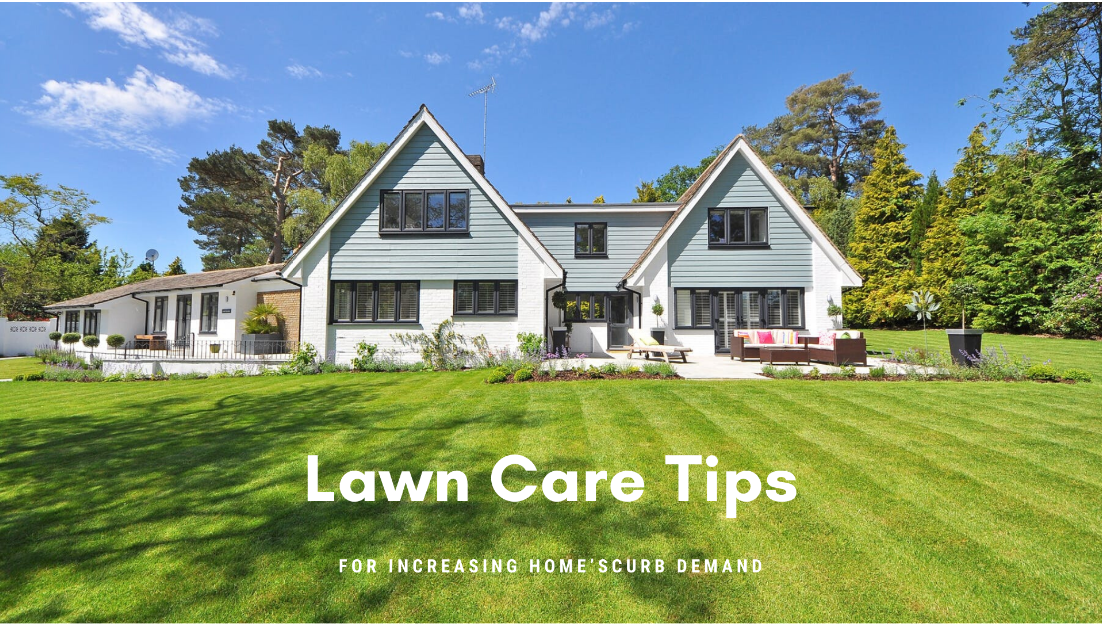 10 Best Lawn Care Tips to Enhance Your Home's Curb Demand